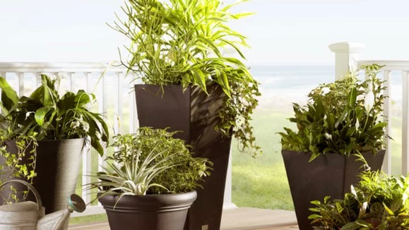 Shoppers say this planter is great for all kind of greenery.