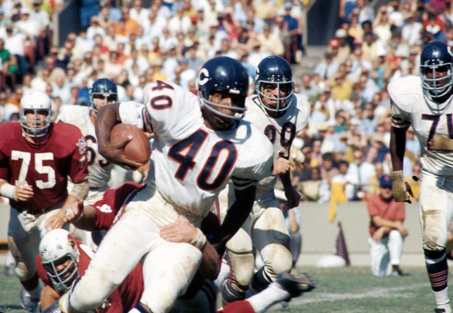 Chicago Bears running back Gayle Sayers in action against the St. Louis Cardinals at Busch Stadium. [File photo]