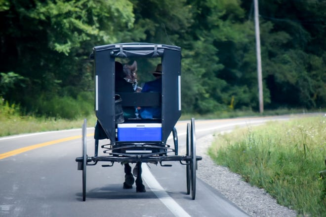 A common sight in the Belmont County area, an Amish family travels north on State Route 800 after stopping in town for business.