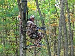 Hunter in Treestand