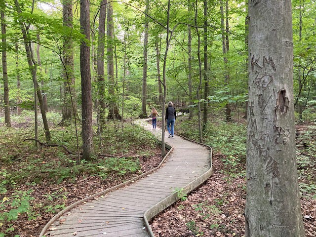A woman and her granddaughter enjoy the boardwalk at Johnson Woods State Nature Preserve north of Orrville.