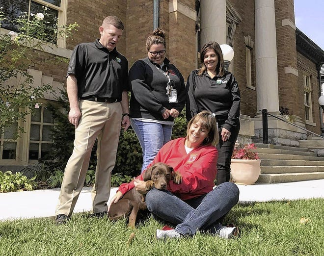 Coco, a therapy dog working at the Delaware County 911 center, rests her head and paws on the arm of her handler, 911 dispatcher Karla Jacobs. Looking on are (from left) county emergency communications director Patrick Brandt, 911 telecommunicator Kadi Scheeler and 911 operations specialist Nancy Nicodemus.
