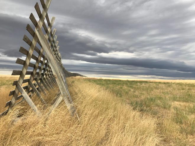 A snow fence meets an infinite sky at the intersection of at Tiger Butte Road and U.S. Highway 87 near Belt. Snow is forecast this weekend across northcentral Montana. Higher winds will usher in the cold front beginning Friday afternoon.
