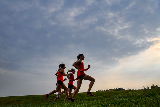 A group of  Northeastern cross country runners make their way along the course as the Bobcats host Dover, 