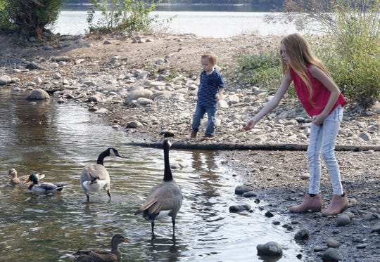 "Trinity Ward, 9, right, and her 3-year-old brother Nolan toss bread to geese and ducks next to the Sacramento River off Park Marina Drive under hazy but sunny skies Thursday, Sept. 24, 2020. ""We're trying to get out and enjoy the sunshine,"" said their mother, Sarah Ward of Redding. ""This is the last bit of nice weather before it changes,"" she said."