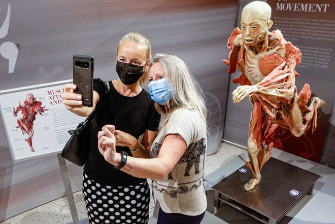 "Astrid Dawson, left, and Minna Tervola take a selfie in front of a muscle attachment exhibit from ""Real Bodies: The Exhibition"" at the South Florida Science Center. Organizers say the exhibit is appropriate for all ages and reveals the mysteries of human anatomy through physiology, culture, and emotion. [Photos by DAMON HIGGINS/The Palm Beach Daily News]"