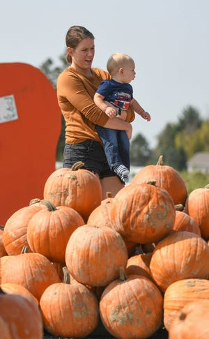 Pumpkin Days at Nickajack Farms has between 10 and 20 acres for outdoor activities, including hayrides, a corn maze, animal petting barn, slides, gourd golf, food, pumpkin patch, haystack hunt, mazes, a paint ball shooting range and education stations. (CantonRep.com / Ray Stewart)