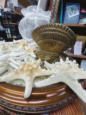 Seashells and home decor for sale at The Painted Mermaid on Howe Street in Southport. [CONTRIBUTED]