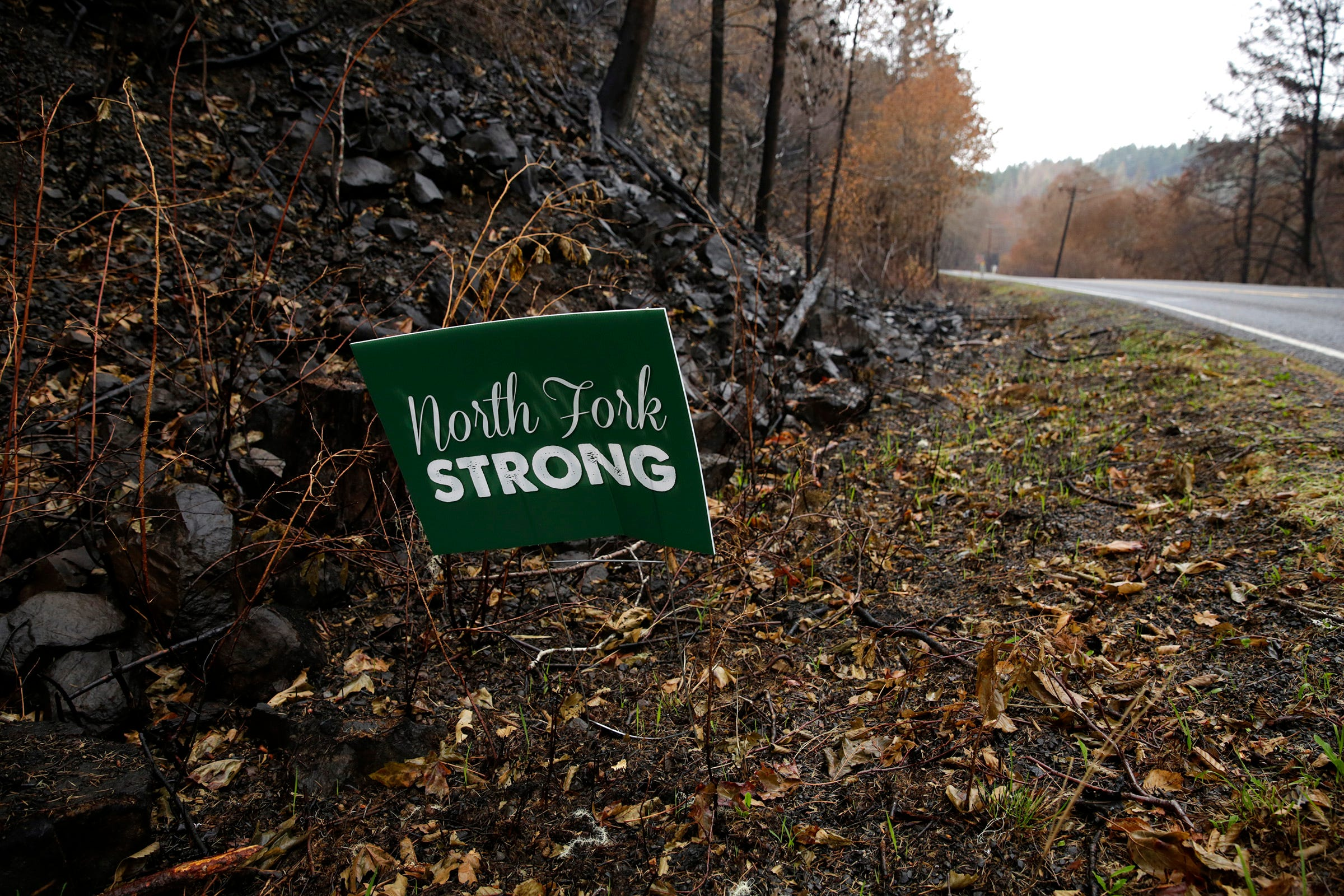 """A """"North Fork strong"""" sign in the ground beside North Fork Road."""