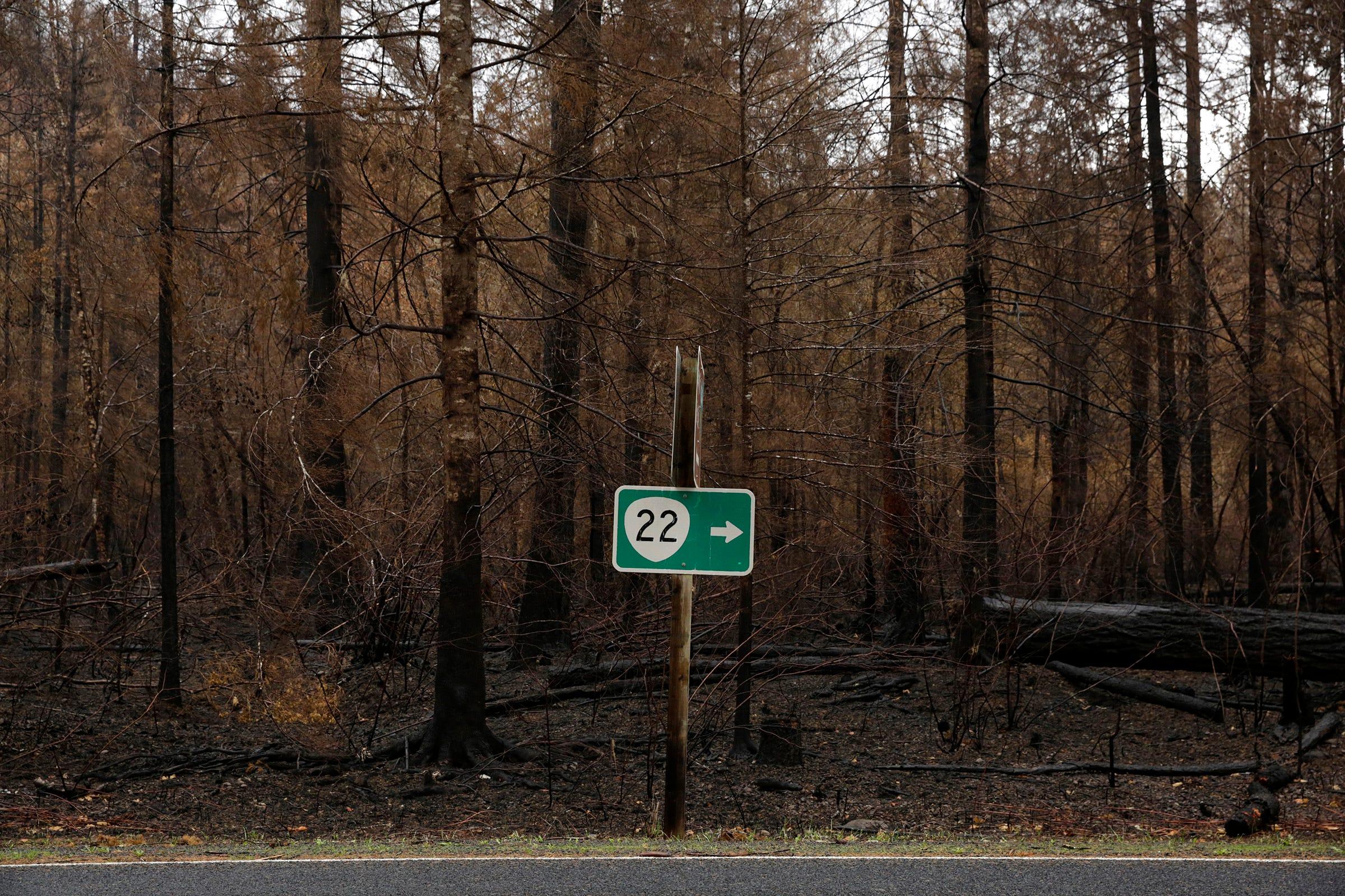 Burned landscape surrounds a sign pointing toward Highway 22 on North Fork Road, September 2020.