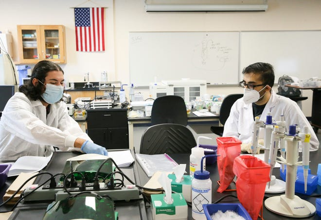 Diego Garcia (left) and Mirage Patel work together during biotechnology lab at Indian River State College on Thursday, Sept. 24, 2020, in Fort Pierce. In an effort to stop the spread of COVID-19, students are socially distanced and wear masks.