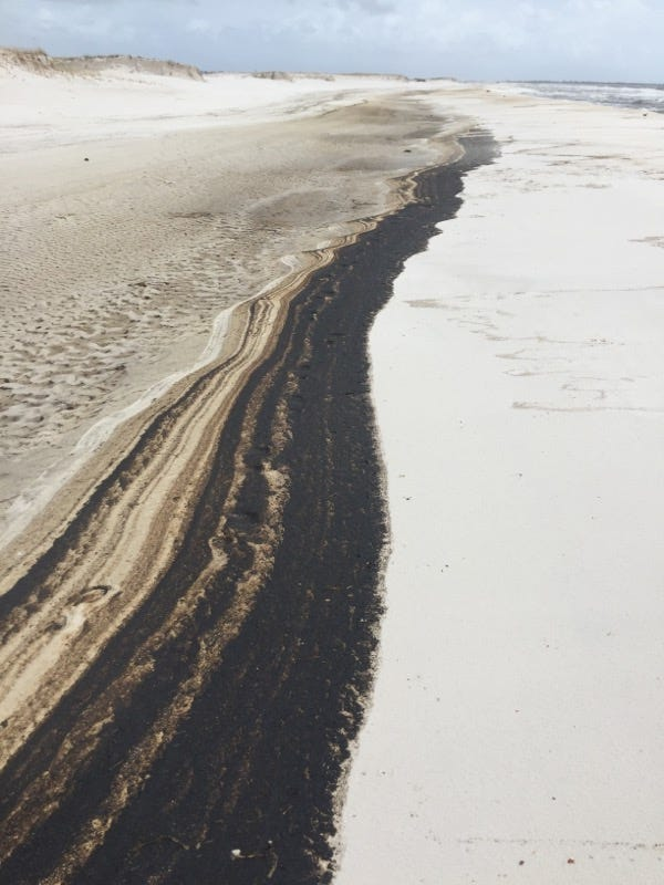 Oil washes up along five-mile stretch of Florida beach in wake of Hurricane Sally
