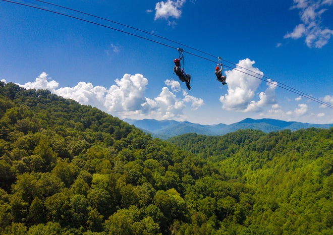 Navitat Canopy Adventures in Asheville offers private outdoor adventure tours that are perfect to bring you back into life after quarantine.