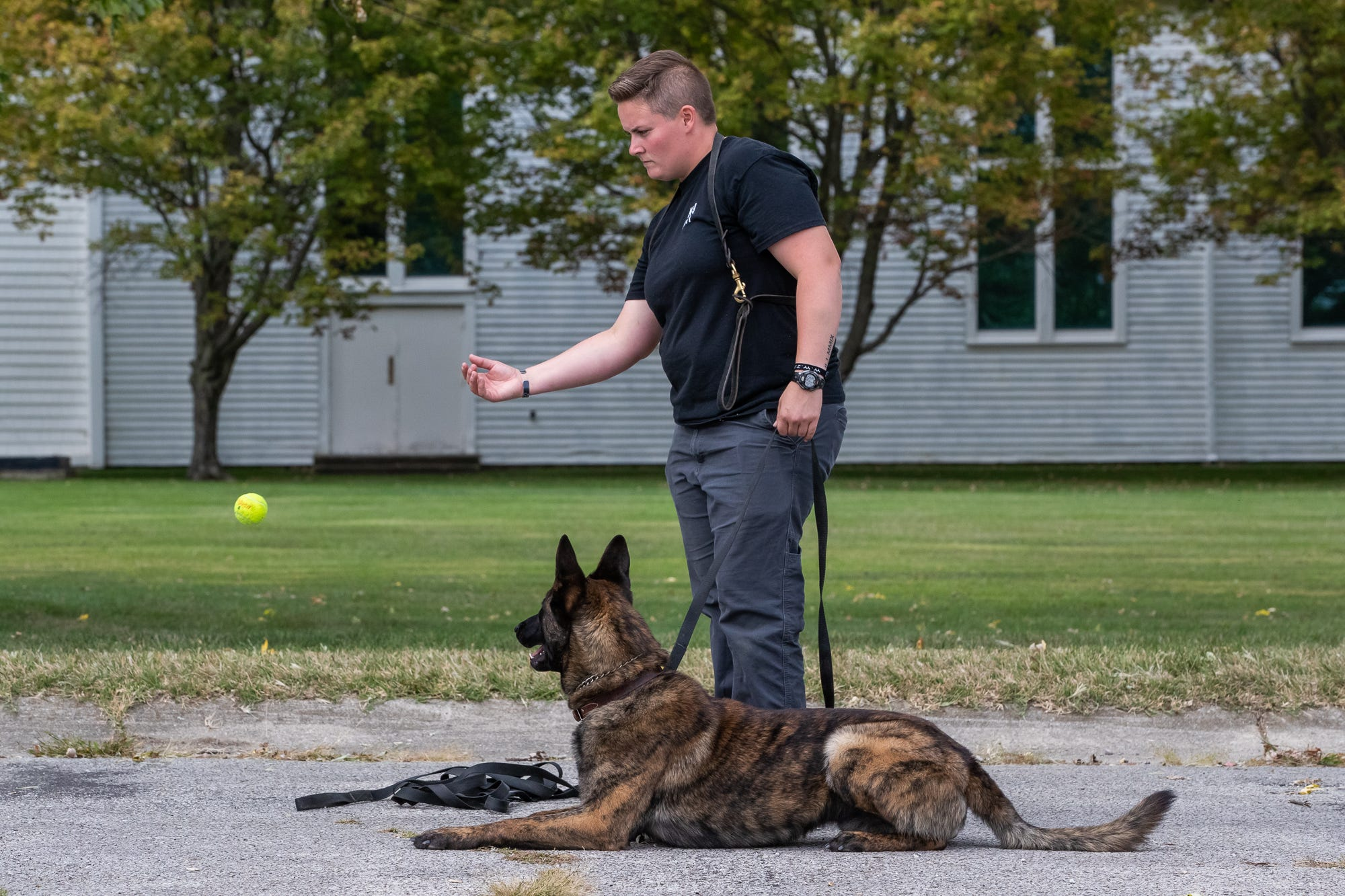 Anna Wicker, of the Murray Kentucky Police Department, works with her Dutch Shepherd K9, Ringo, on obedience at Vohne Liche Kennels on Wednesday, Sept. 23, 2020.