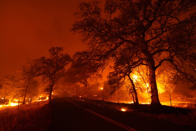 The Zogg Fire burns on both sides of Platina Road