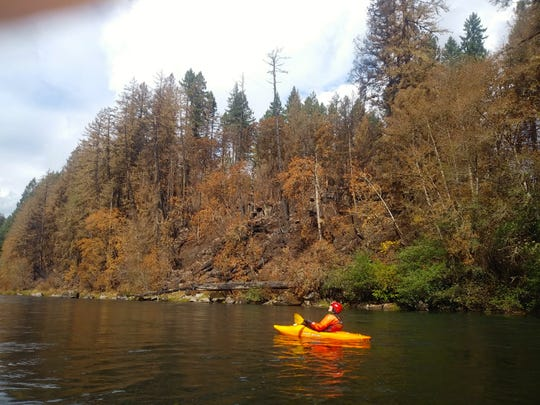The North Santiam River between Mill City and Lyons-Mehama since it was burned by the Beachie Creek Fire.