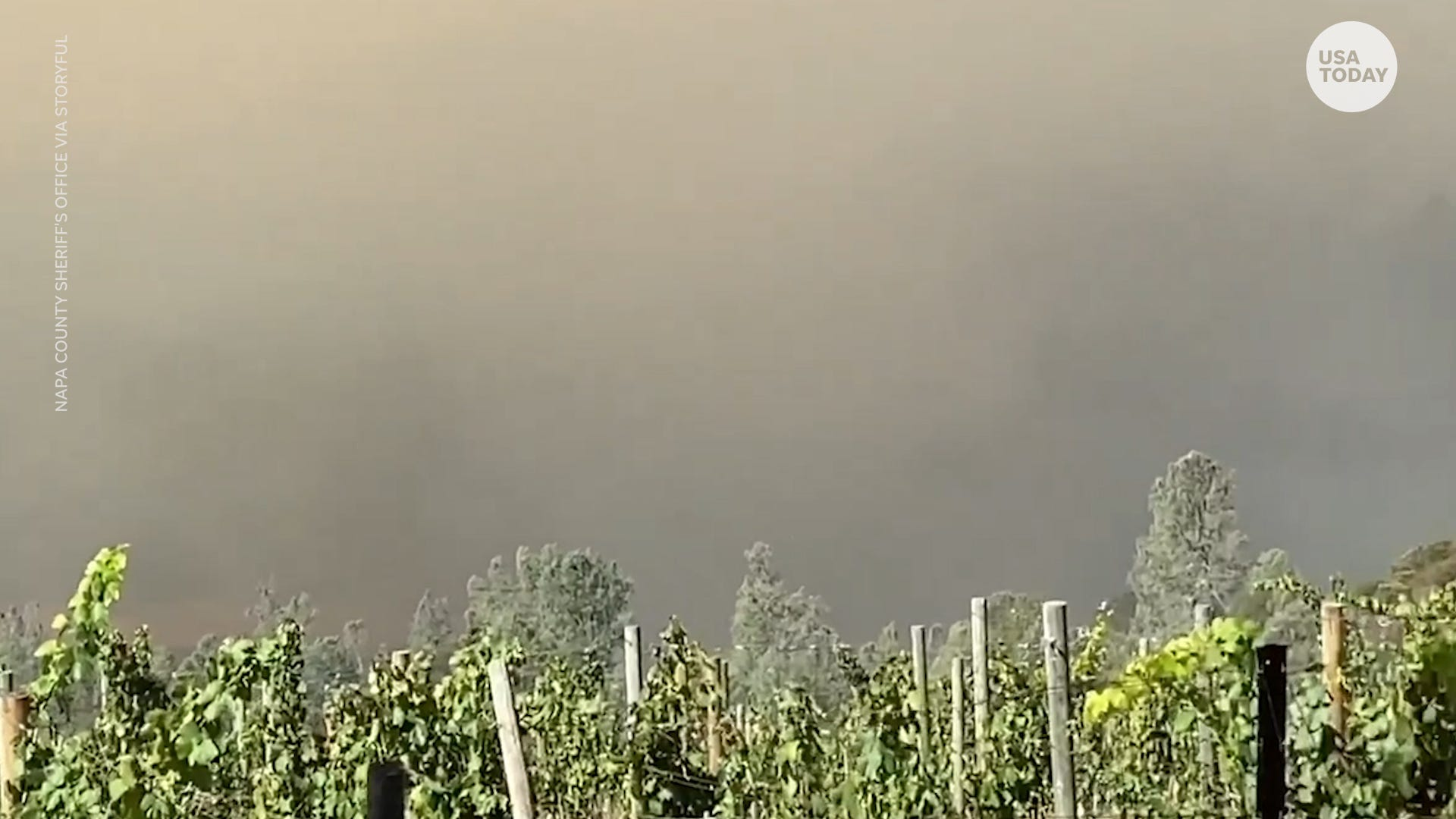 Glass Fire destruction: California's world-famous wineries impacted