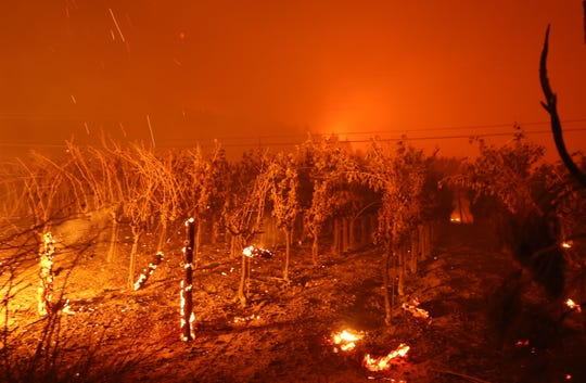 ST.  HELENA, CALIFORNIA - SEPTEMBER 27: Vineyards in Chateau Boswell Cellar burn while the Glass Fire moves through the area on September 27, 2020 in St. Helena, California.  The fast-moving glass fire burned more than 1,500 acres and destroyed homes.  Much of Northern California is under a red flag warning of high fire risk until Monday night.  (Photo by Justin Sullivan / Getty Images) *** BESTPIX *** ORG XMIT: 775568437 IDENTIFICATION OF ORIGIN: 1277061469