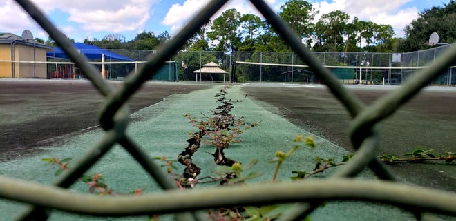 Weeds grow between cracks on the only public tennis courts in DeBary, located in Bill Keller Park. The courts, which have been closed since last October, are in line for a makeover, following the City Council's approval of a proposal to reconstruct the playing surfaces.