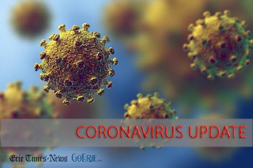 Examples of particles of COVID-19, the new coronavirus, are shown in this artist's rendering.