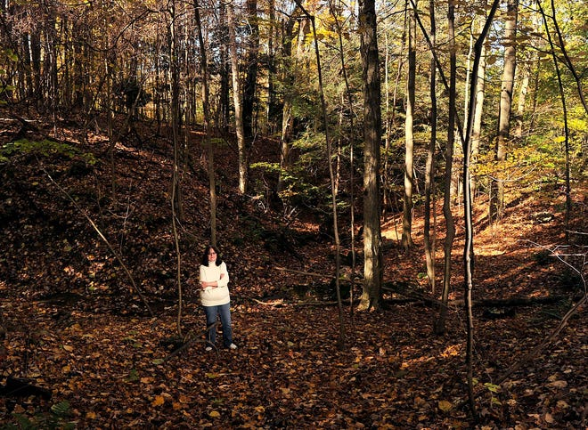 """Erie author Stephanie Wincik stands in the woods near the so-called Axe Murder Hollow off of Thomas and Sterrettania roads in Millcreek Township in October 2014. The area gets its name from an old horror story, retold in Wincik's 2002 book, """"Ghosts of Erie County,"""" and involves the ax-wielding ghost of a farmer who was said to have brutally murdered his wife and her lover nearby. According to local lore dating back at least 60 years, the ghastly crime, which never happened as far as law enforcement is concerned, was committed in a nearby area that has now been developed into a residential neighborhood. (File/Erie Times-News0"""