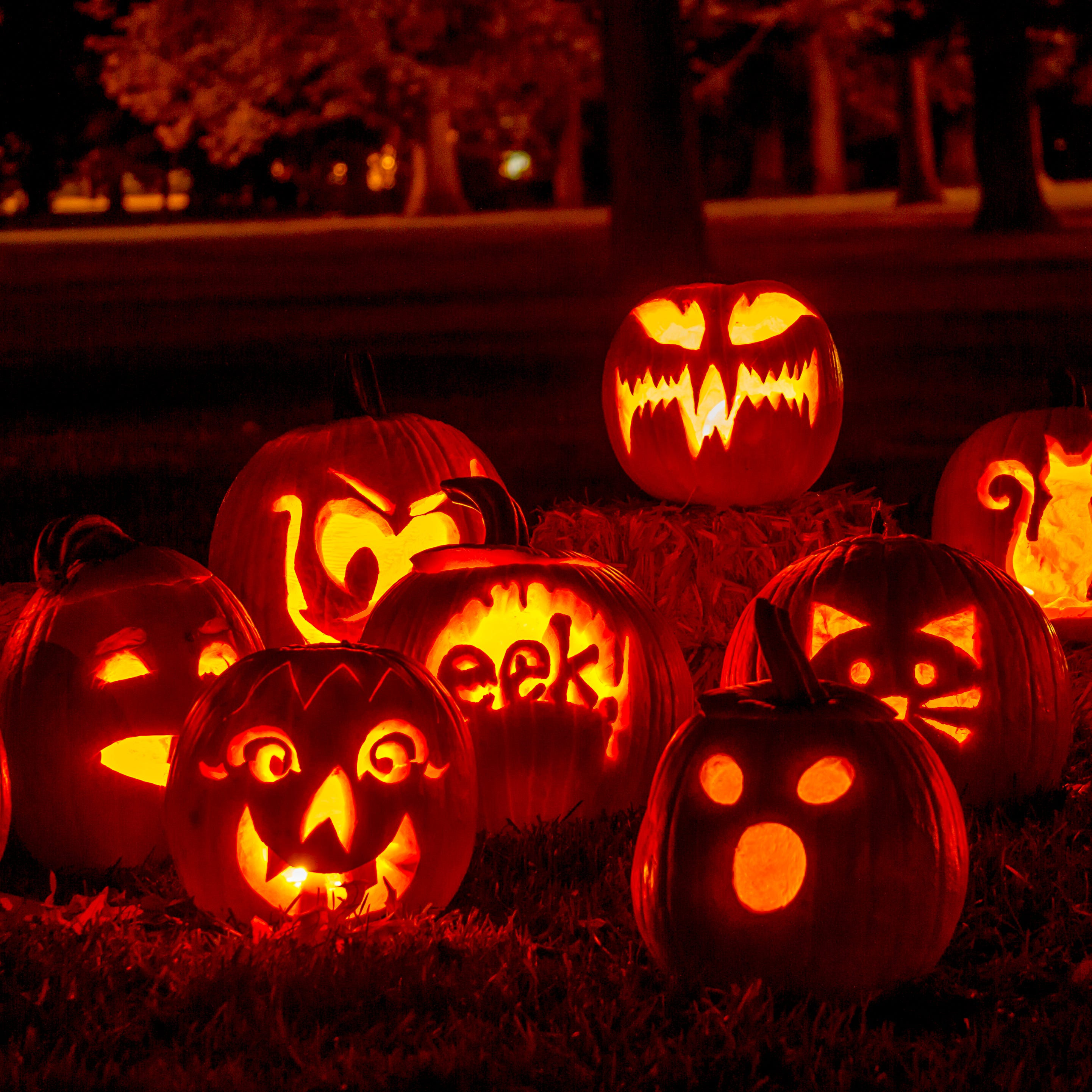 Halloween For Kids Las Cruces 2020 Las Cruces Halloween 2020: Guide to holiday activities