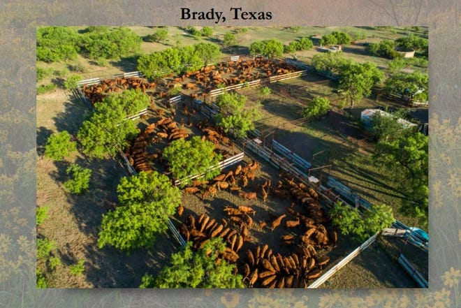 Screen capture from kinglandwater.com/properties/ford-ranch that shows livestock pens on the Ford Ranch outside Brady, Texas.
