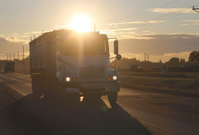 Here, with the sunrise as a backdrop, the driver of a loaded truck prepares to turn into the piling yard.