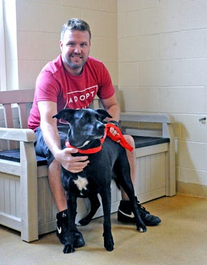 Joe Kay, adoption coordinator at the Wayne County Humane Society, interacts with Nikki, a shelter dog. Kay features dogs at the WCHS on his TikTok under the handle @adoptingdogs.