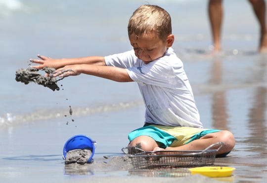 Bradley Cerer looks for sharks'  teeth in July, 2014, at Caspersen Beach. Visitors from all parts of the state and country come to Caspersen Beach to sift through shells and sand to take home sharks teeth and fossils.