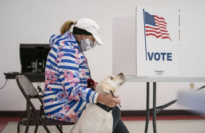 Catherine Anderson sits with her dog, Ivy, as she votes in the Wisconsin Primary at the Billings Park Civic Center in Superior, Wis., in April. [Alex Kormann/Star Tribune via AP]