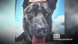 Elderly IMPD dog bite victim describes attack