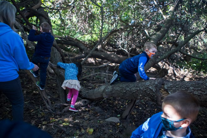 Prekindergarten students at St. Anne's Episcopal School play in the woods together as they have class Monday, Sept. 21, 2020, in Middletown.
