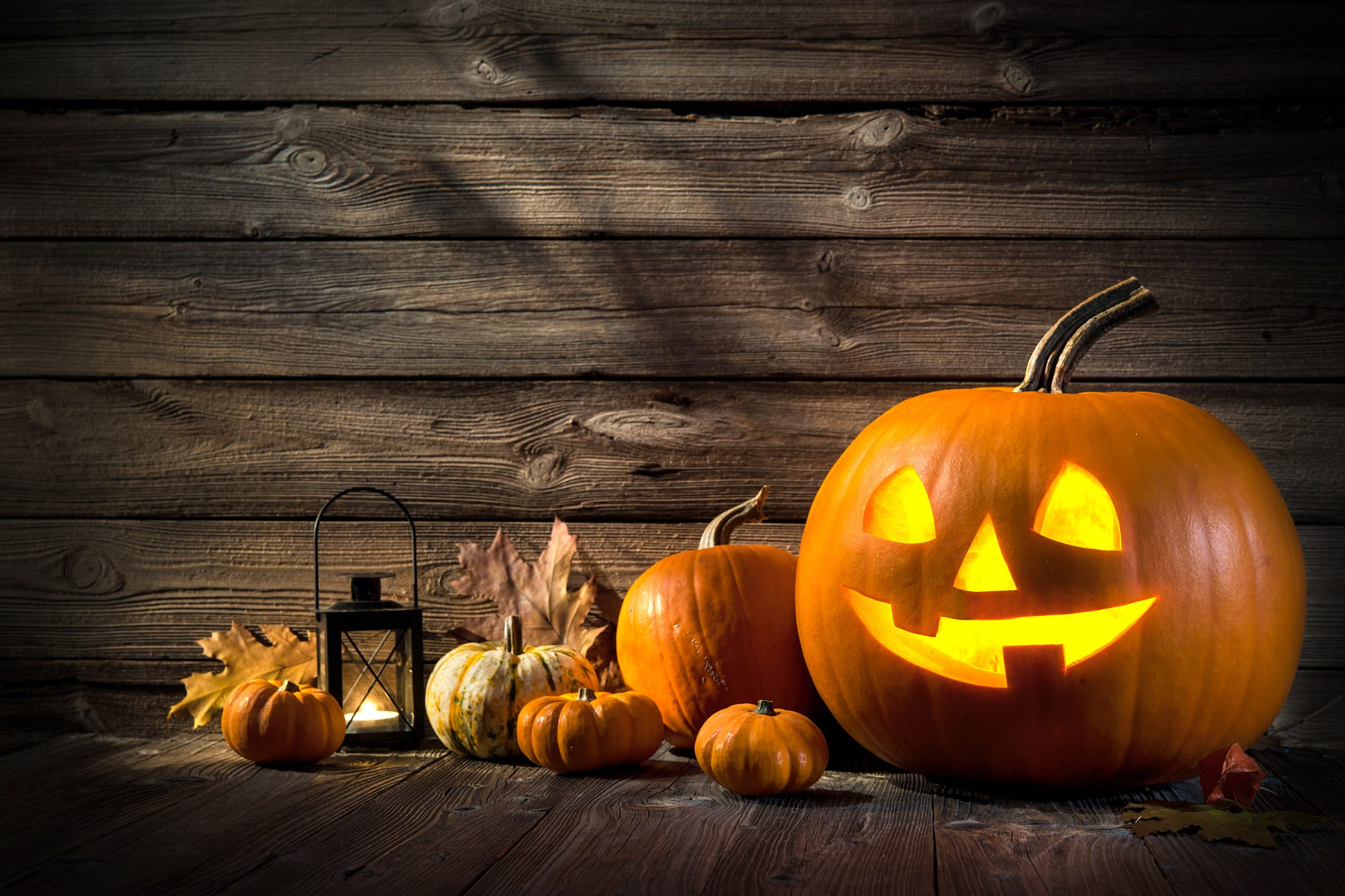 How to pick the best pumpkin for carving