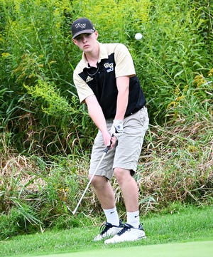 Western Wayne senior Matt Stone qualified for the District Two Tournament after shooting a 90 at the qualifier.