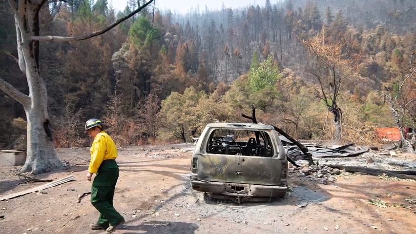 Poor land management and climate change are blamed for devastating fires in West