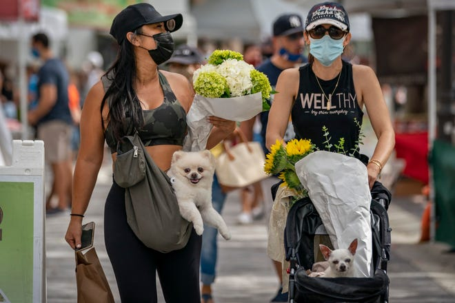 Samantha O'Sullivan carries her dog, Rocco, and Olivia Fleming pushes her dog, Peter, while visiting the West Palm Beach GreenMarket Saturday on its opening day. (Greg Lovett / The Palm Beach Post)