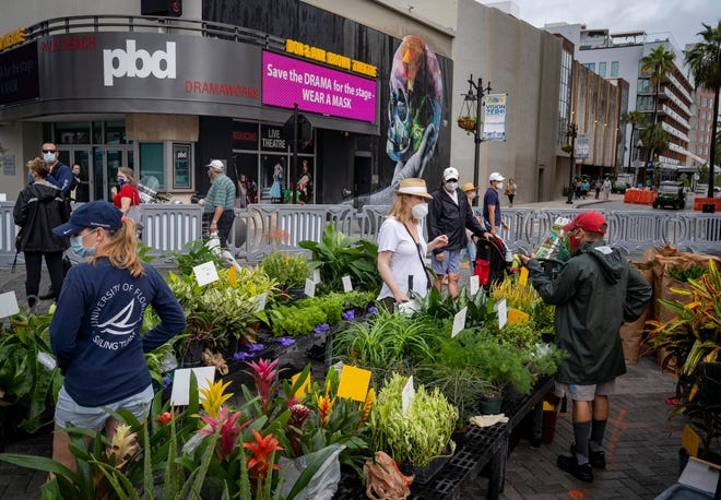 People look at plants while attending the West Palm Beach GreenMarket opening in West Palm Beach, Florida on October 3, 2020.