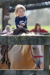 People enjoy the numerous activities at Holland Farms along with gorgeous weather on Saturday, October 3, 2020. Holland Farms is located at 2055 Homer Holland Rd. in Milton and currently is open 8 a.m. - 6 p.m. every day except Sundays, when the hours are 9 a.m. - 6 p.m.