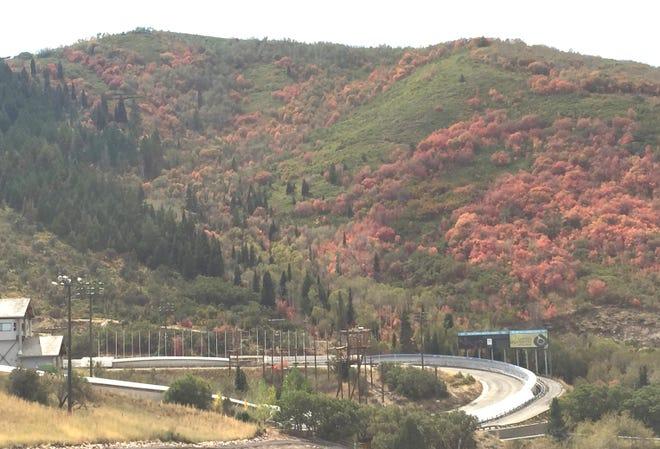 Aspens, maples and oaks offer resplendent fall colors above Park City.