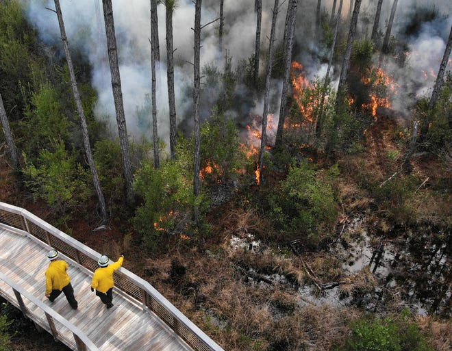 Panama City Beach Fire and Rescue worked with the Panama City Beach Conservation Park to coordinate a prescribed burn on Jan. 22, 2020.