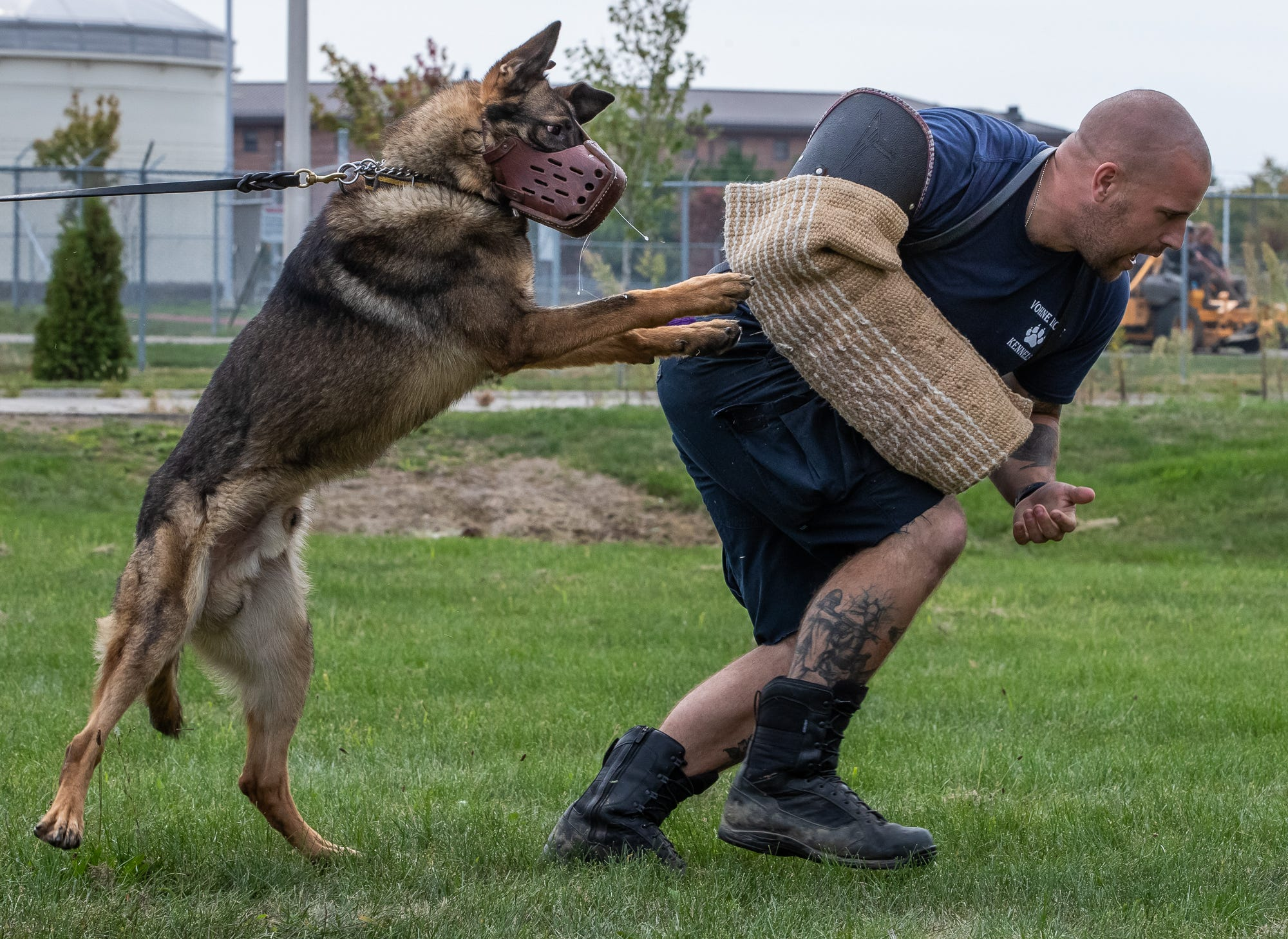 Adam Elliott (not pictured), of the Stillwater Police Department in Oklahoma, releases his K-9, Rotex, on a decoy during training at Vohne Liche Kennels on Wednesday, Sept. 23, 2020. Rotex and Elliot are working on bites without using the typical bite gear. The exercise helps get the dogs accustomed to biting things other than typical bite gear.