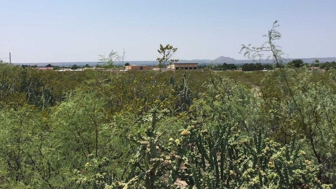 The Las Cruces City Council approved a development agreement between the city and Tierra Del Sol to build affordable housing on this empty tract of land near Sierra Middle School.