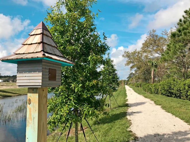 Summer Lake North and Arabella Reserve offer nature and proximity to all the best Florida has to offer.