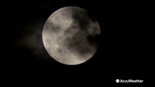 A rare full moon will shine for this year's Halloween, which will give the trick-or-trainers additional pleasure for the holiday.  This is also a blue moon.