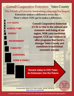 CCE 'Friends of Extension' flyer.