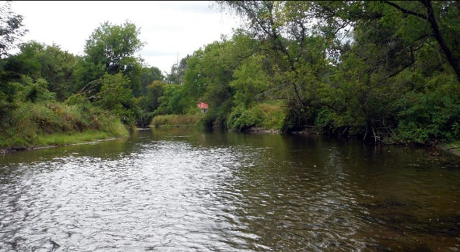 New trees and log structures for the Cohocton River help improve the habitat for trout living in the waters.