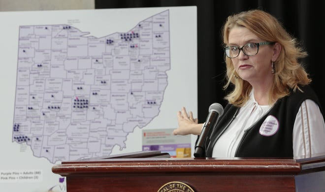 Jo Simonsen of the Ohio Domestic Violence Network explains results from the group's annual review of domestic violence fatalities during a Statehouse gathering in 2018. The presentation was virtual this year.