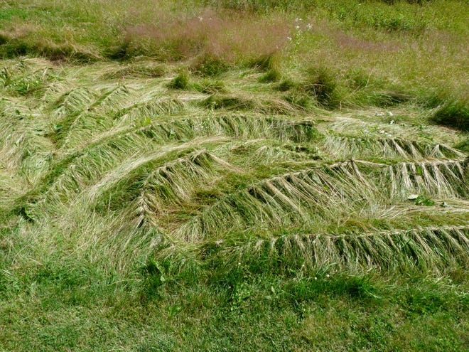 Pamela Callendar plays with grasses for her Braided Grass design.