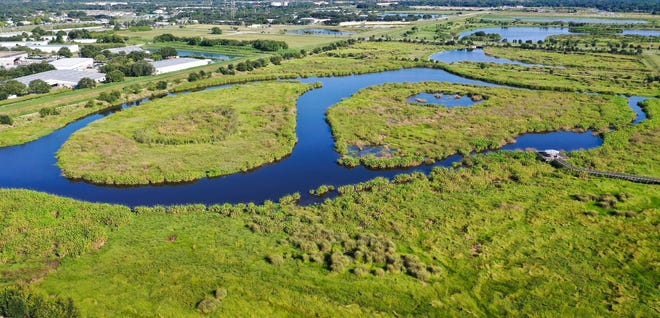 Celery Fields preserve is just a few block north of the Shadow Oaks Estates neighborhood.